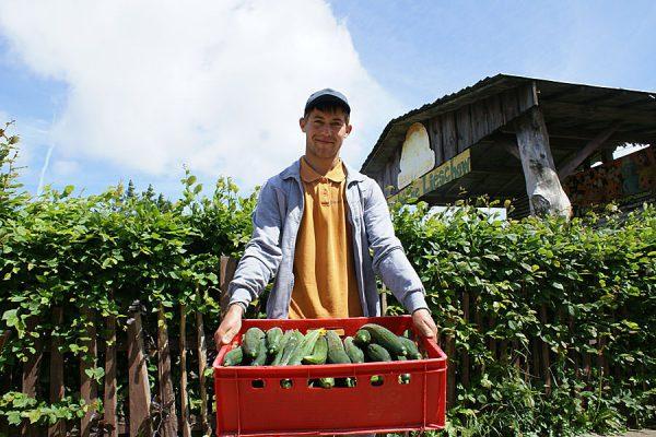 bauer-lange-insel-ruegen-landwirtschaft